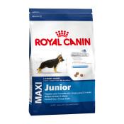 royal_canin_maxi_junior.jpg