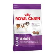 royal-canin-giant-adult.jpg